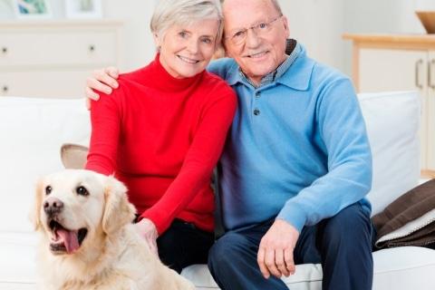 claves-elegir-perro-personas-mayores